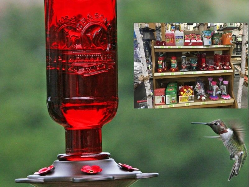 Get Your Feeders Ready For The Hummingbirds And Orioles