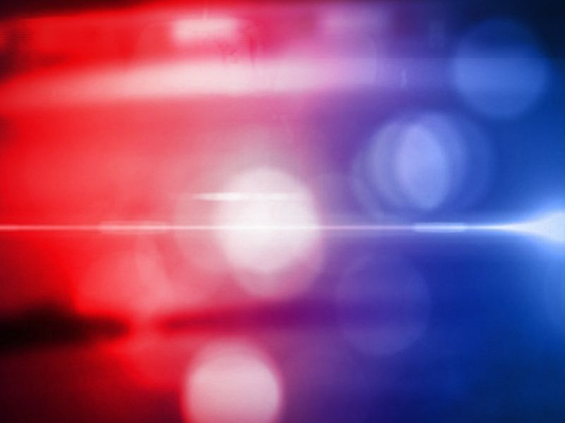 Teenager Killed By Falling Tree In Barron County