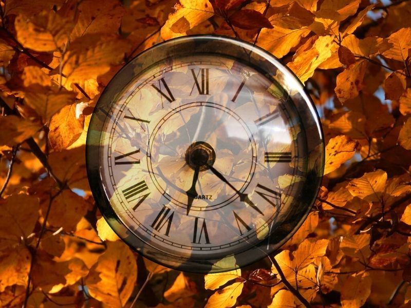 Fall Back Safely This Weekend As Daylight Saving Time Ends