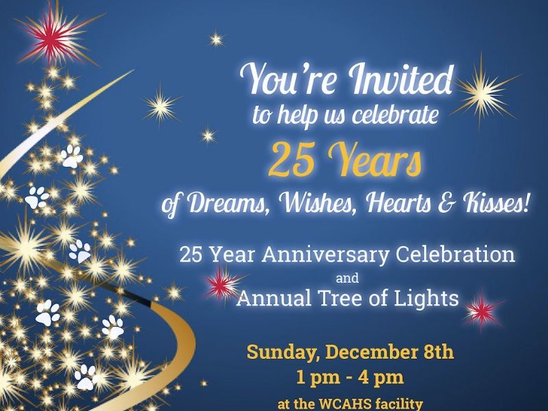 Join Us For This Special Tree Of Lights & 25th Anniversary Celebration