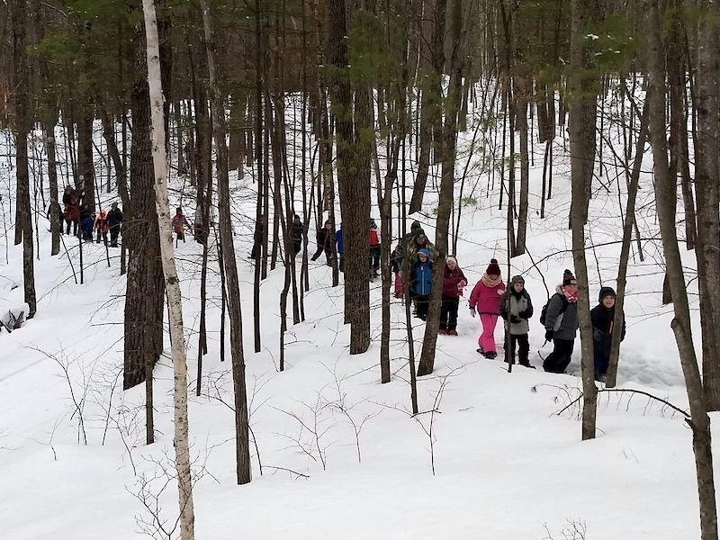 Natural Connections: Winter Adaptations Of 3rd Graders
