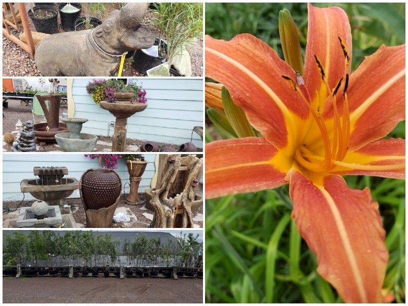 The Sales Continue At Yellow River Gardens