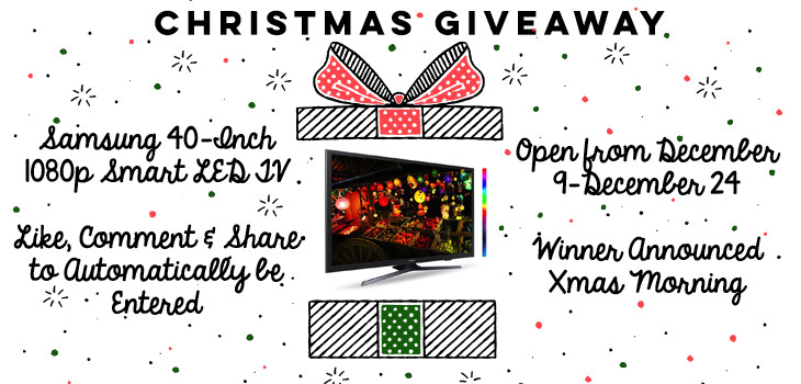 (WINNER ANNOUNCED) Special Christmas Giveaway from DrydenWire.com
