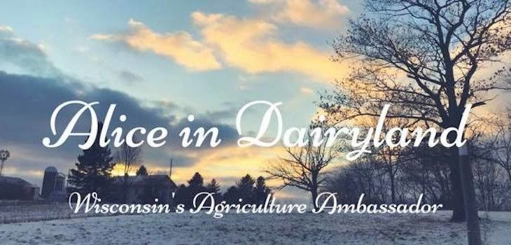 Alice in Dairyland Application Period Now Open