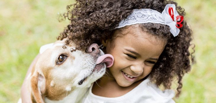 Ask The Dentist: 'Do My Pets Get Cavities?'