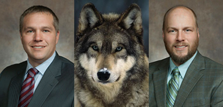 Jarchow, Milroy Debate on Wolves Continues