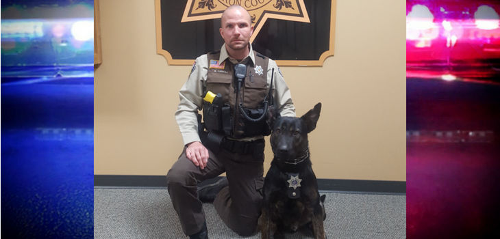 Barron County Deputy Carroll & K9 Koda Announced as 'Detector Case of the Quarter'