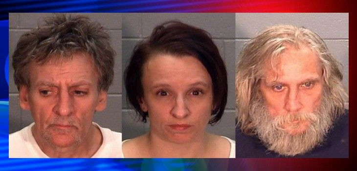 Three Facing Felony Charges Following Drug Bust