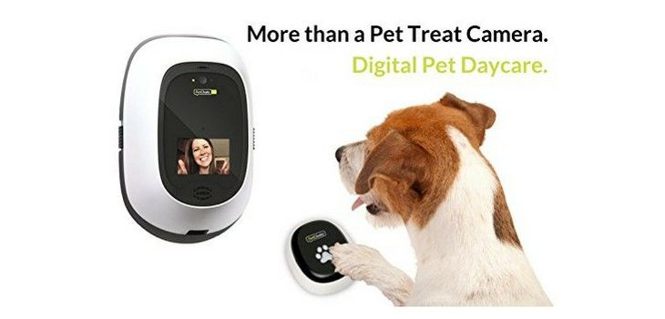 DEAL: Save 21% on PetChatz HD and PawCall (as seen on the Today Show)!