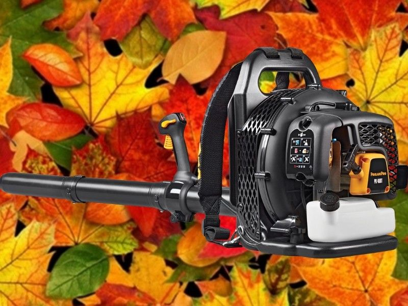 Tired of Raking Leaves? Rent a New Backpack Blower from Northwoods Hardware Hank!